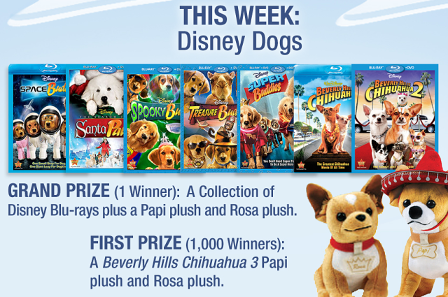 Disney Movie Rewards Splash Into Summer Giveaway Week 3 Disney Dogs
